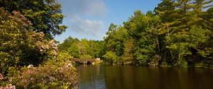 ravenel lake